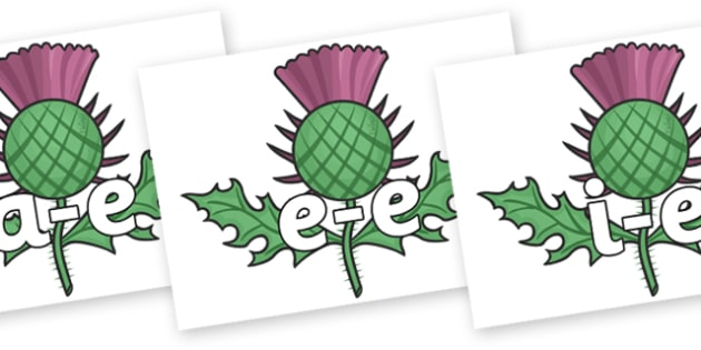 Split Digraphs on Thistles - Modifying E, letters, modify, Phase 5, Phase five, alternative spellings for phonemes, DfES letters and Sounds