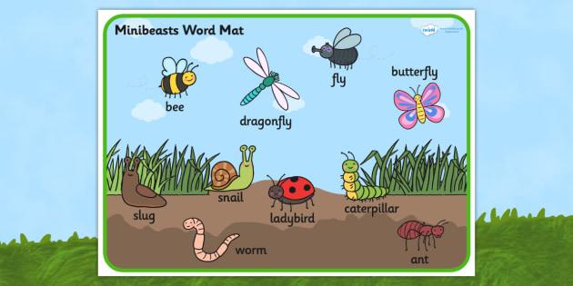 Minibeast Scene Word Mat - minibeast,  vocabulary mat, word mat, key words, topic words, word poster, vocabulary poster, scene words, literacy