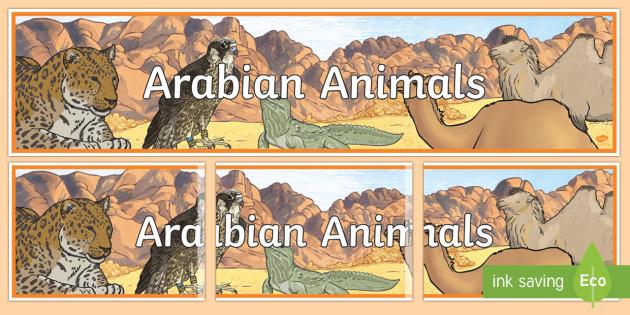 Arabian Animals Display Banner - Science, Living World, Arabian, Animals, Display, Banner, UAE.