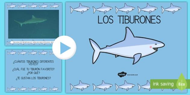 Presentación: Bajo el mar - los tiburones