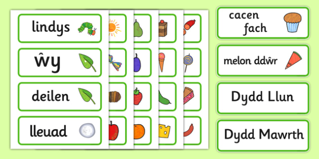 Word Cards (Welsh Translation) to Support Teaching on The Very Hungry Caterpillar - wales