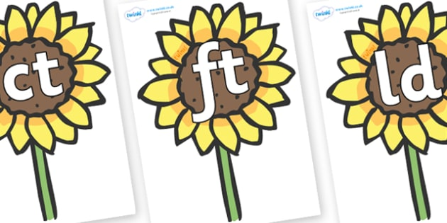 Final Letter Blends on Sunflowers - Final Letters, final letter, letter blend, letter blends, consonant, consonants, digraph, trigraph, literacy, alphabet, letters, foundation stage literacy