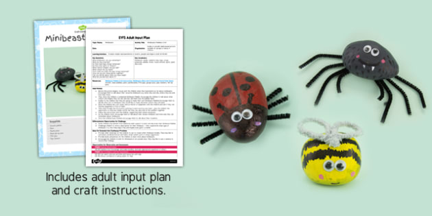 Minibeast Pebbles Craft EYFS Adult Input Plan and Resource Pack - adult led, craft