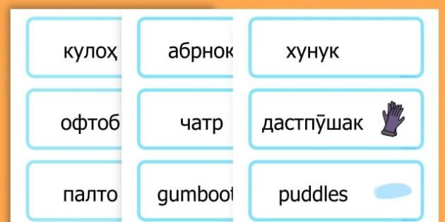 Winter Word Cards - seasons, weather, key words, visual aids  - Tajik