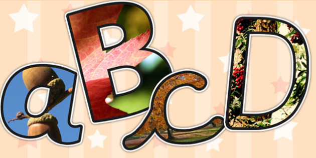 Autumn Themed A4 Photo Display Lettering - autumn, lettering