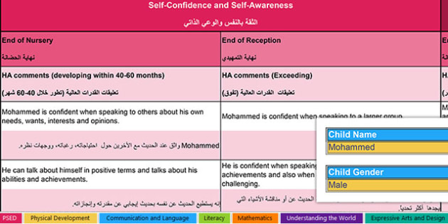 Report Writing Bank of Differentiated Statements EYFS Arabic Translation - arabic, report writing, bank, differentiated, statements