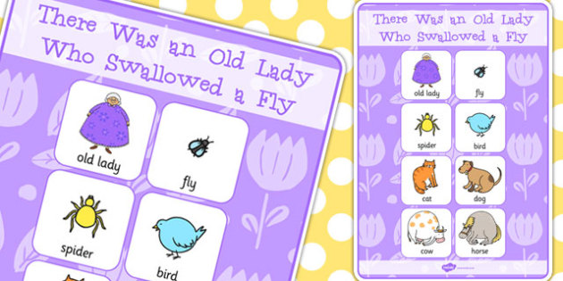 There Was an Old Lady Who Swallowed a Fly Vocabulary Poster - fly