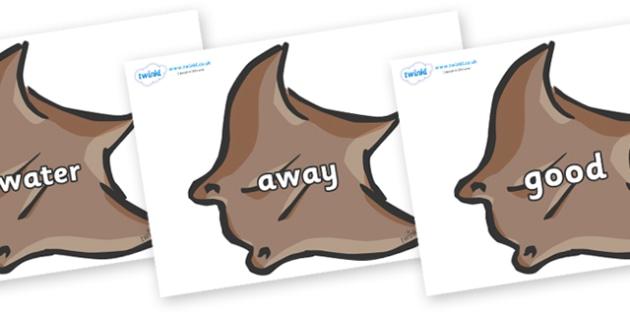 Next 200 Common Words on Manta Rays - Next 200 Common Words on  - DfES Letters and Sounds, Letters and Sounds, Letters and sounds words, Common words, 200 common words