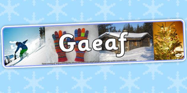 Baner Ffotograffau 'Y Gaeaf' - winter, banner