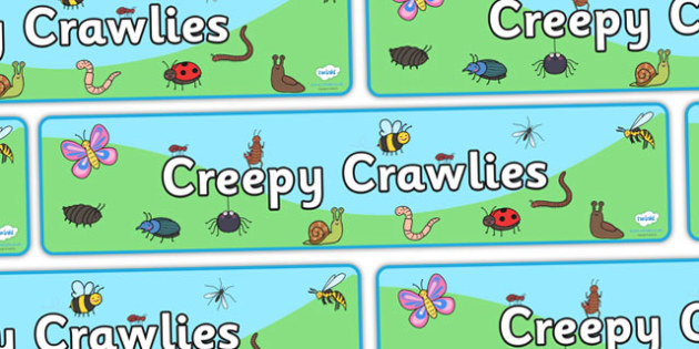 Creepy Crawlies Display Banner - Banner, minibeasts, Minibeast, Display, Topic, Foundation stage, knowledge and understanding of the world, investigation, living things, snail, bee, ladybird, butterfly, spider, caterpillar
