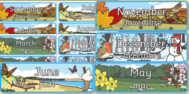 Months of the Year Display Posters French Translation - french, months, year, display