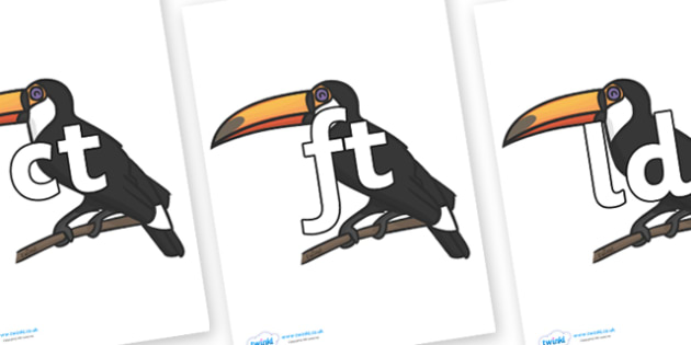 Final Letter Blends on Toucans - Final Letters, final letter, letter blend, letter blends, consonant, consonants, digraph, trigraph, literacy, alphabet, letters, foundation stage literacy