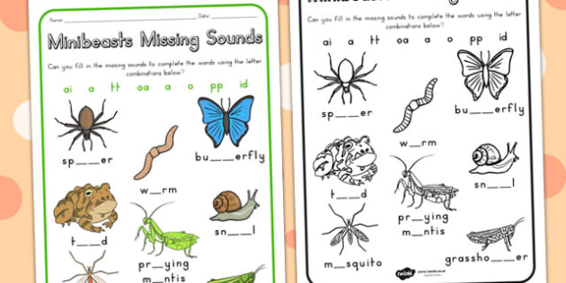 Minibeasts Missing Sounds Worksheet - sounds, sound games, sound