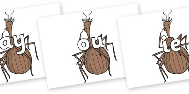 Phase 5 Phonemes on Miss Spider to Support Teaching on James and the Giant Peach - Phonemes, phoneme, Phase 5, Phase five, Foundation, Literacy, Letters and Sounds, DfES, display