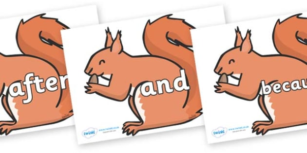 Connectives on Red Squirrels - Connectives, VCOP, connective resources, connectives display words, connective displays