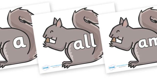 Foundation Stage 2 Keywords on Grey Squirrels - FS2, CLL, keywords, Communication language and literacy,  Display, Key words, high frequency words, foundation stage literacy, DfES Letters and Sounds, Letters and Sounds, spelling