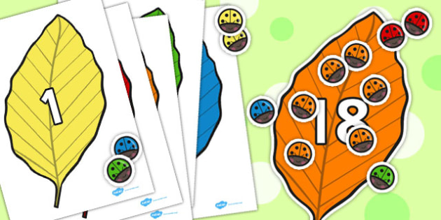 Ladybird and Leaf Counting Activity to 20 - ladybird, leaf, count