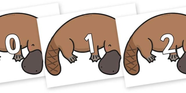 Numbers 0-50 on Platypus - 0-50, foundation stage numeracy, Number recognition, Number flashcards, counting, number frieze, Display numbers, number posters