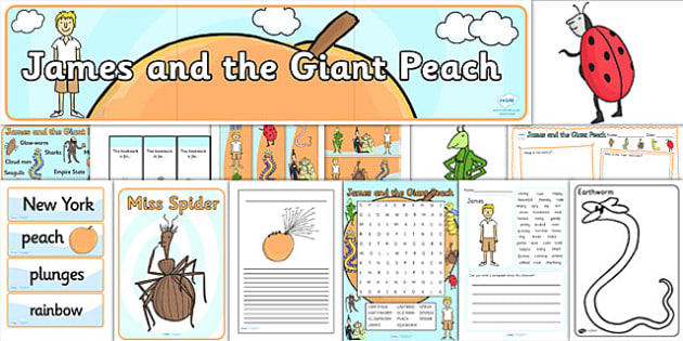 Resource Pack to Support Teaching on James and the Giant Peach - resource pack, zip file, james and the giant peach, giant peach resource pack, james and the giant peach zip file