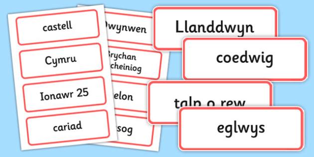 Santes Dwynwen Cardiau Fflach - welsh, cymraeg, Santes Dwynwen, Cardiau Fflach, flashcards