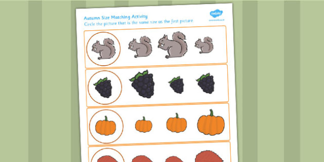 Autumn Themed Size Matching Worksheets - seasons, weather, match