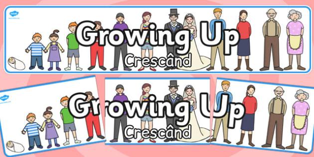 Growing Up Display Banner Romanian Translation - romanian, display banner, grow