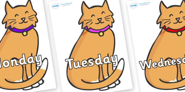 Days of the Week on Pussy Cats - Days of the Week, Weeks poster, week, display, poster, frieze, Days, Day, Monday, Tuesday, Wednesday, Thursday, Friday, Saturday, Sunday