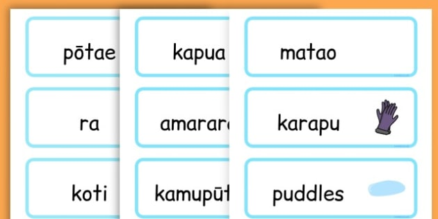 Winter Word Cards - seasons, weather, key words, visual aids  - Maori