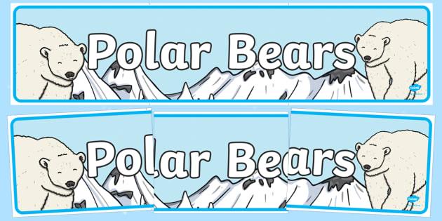 Polar Bears Display Banner