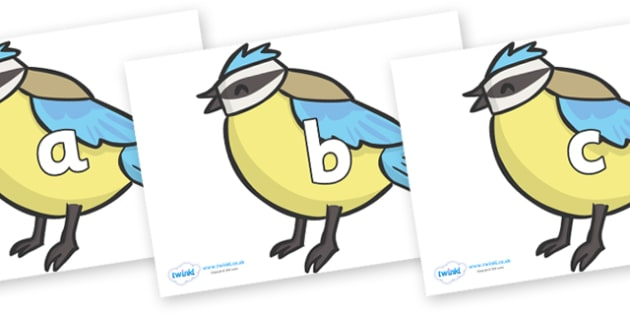 Phase 2 Phonemes on Birds - Phonemes, phoneme, Phase 2, Phase two, Foundation, Literacy, Letters and Sounds, DfES, display