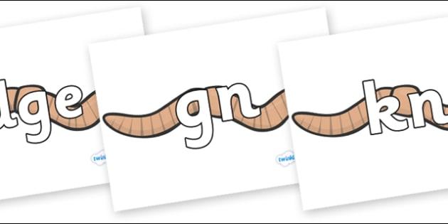 Silent Letters on Worms - Silent Letters, silent letter, letter blend, consonant, consonants, digraph, trigraph, A-Z letters, literacy, alphabet, letters, alternative sounds