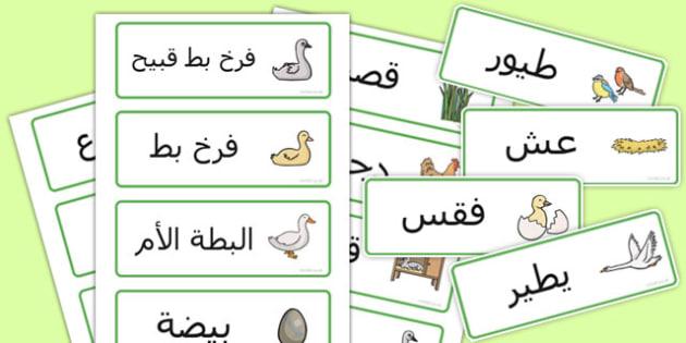 بطاقات كلمات قصة فرخ البط القبيح - فرخ البط القبيح، فرح البط