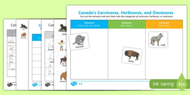 Canada's Carnivores, Herbivores, and Omnivores Activity Sheet, worksheet