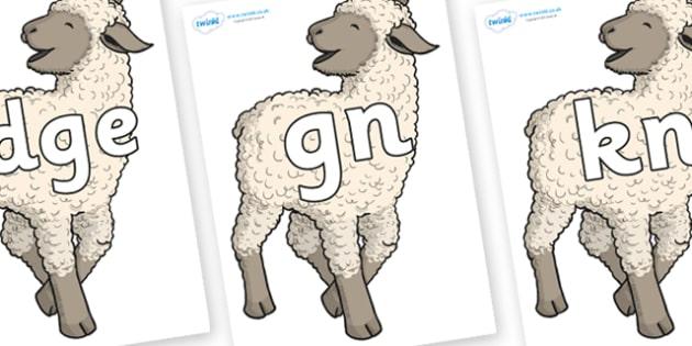 Silent Letters on Lamb - Silent Letters, silent letter, letter blend, consonant, consonants, digraph, trigraph, A-Z letters, literacy, alphabet, letters, alternative sounds