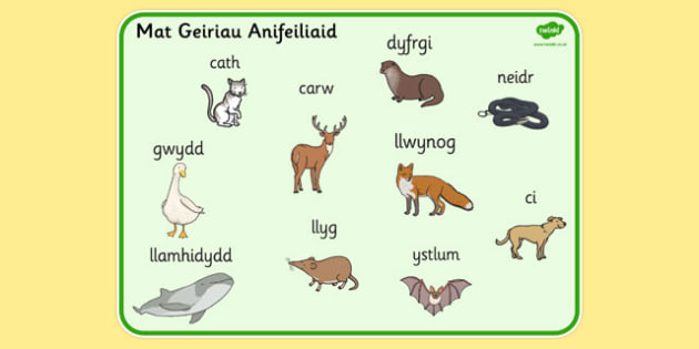 Welsh Animals Word Mat - welsh, animals, word, mat, word mat