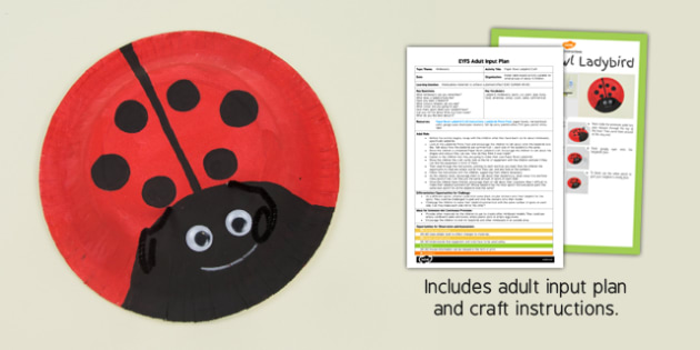 Paper Bowl Ladybird Craft EYFS Adult Input Plan and Resource Pack - minibeasts, EYFS lesson plan, activity,