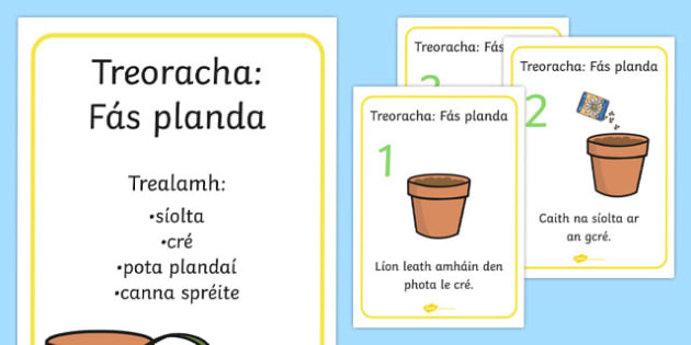 How to Grow a Plant Posters Gaeilge - Plant, Growth, Topic, Foundation stage, Flower, knowledge and understanding of the world, investigation, living things, labelling, labelling plant