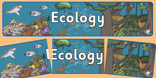 Ecology Display Banner NZ - nz, new zealand, ecology, display banner, display, banner