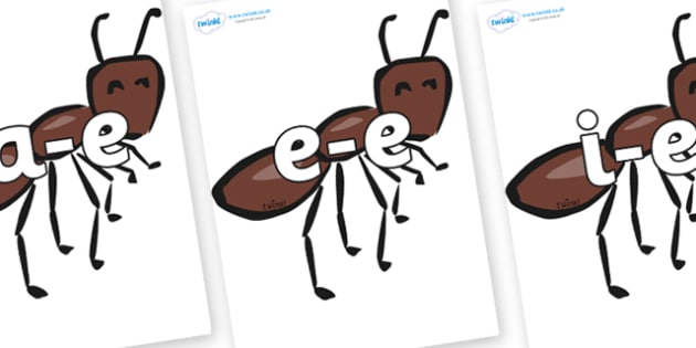 Modifying E Letters on Ants - Modifying E, letters, modify, Phase 5, Phase five, alternative spellings for phonemes, DfES letters and Sounds