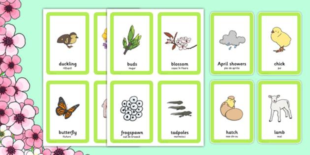 Spring Pairs Matching Game Romanian Translation - romanian, games, match, activity, activities