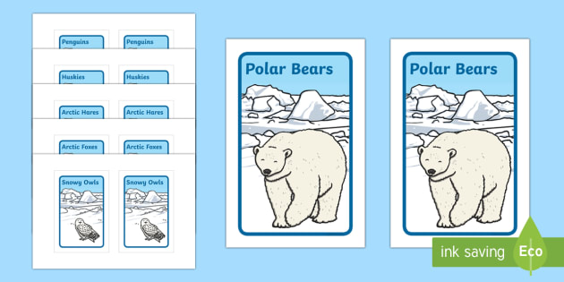 Ikea Tolsby Arctic Animal Group Prompt Frame - The Arctic, Polar Regions, north pole, south pole, explorers, animals, arctic animals, Ikea tolsby,