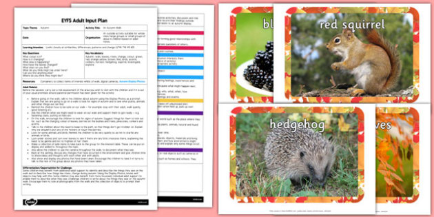An Autumn Walk EYFS Adult Input Plan and Resource Pack - seasons, weather, planning