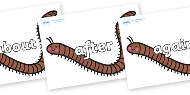 KS1 Keywords on Millipedes - KS1, CLL, Communication language and literacy, Display, Key words, high frequency words, foundation stage literacy, DfES Letters and Sounds, Letters and Sounds, spelling