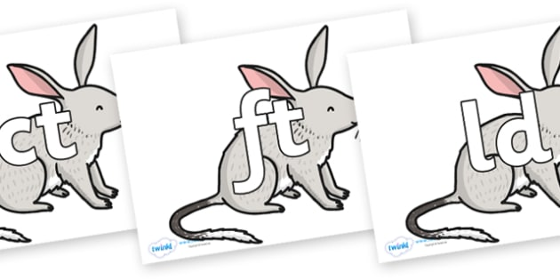 Final Letter Blends on Bilby - Final Letters, final letter, letter blend, letter blends, consonant, consonants, digraph, trigraph, literacy, alphabet, letters, foundation stage literacy