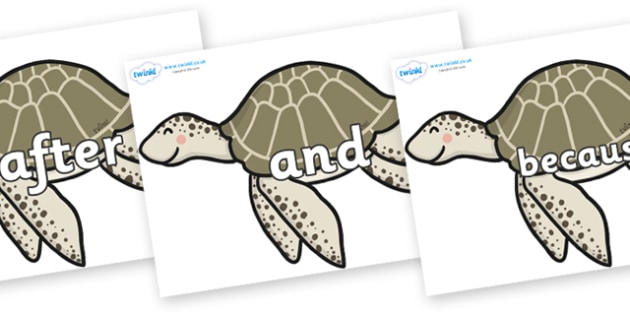 Connectives on Turtles - Connectives, VCOP, connective resources, connectives display words, connective displays