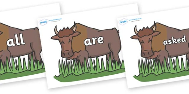 Tricky Words on Bison - Tricky words, DfES Letters and Sounds, Letters and sounds, display, words
