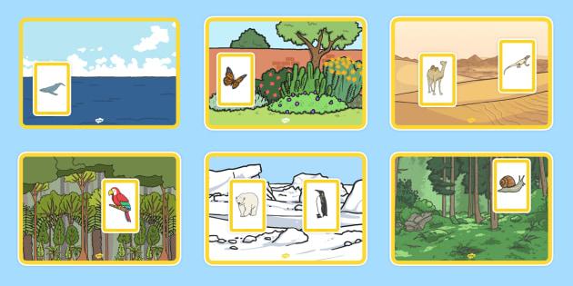 Animals and Their Habitats Matching Activity - animals, habitats