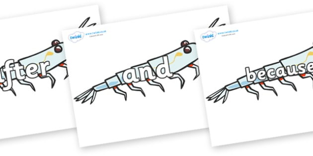 Connectives on Plankton - Connectives, VCOP, connective resources, connectives display words, connective displays