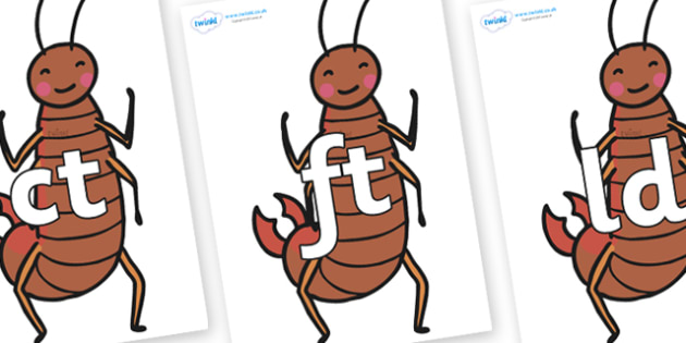 Final Letter Blends on Earwigs - Final Letters, final letter, letter blend, letter blends, consonant, consonants, digraph, trigraph, literacy, alphabet, letters, foundation stage literacy
