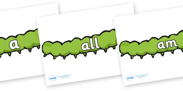 Foundation Stage 2 Keywords on Caterpillars - FS2, CLL, keywords, Communication language and literacy,  Display, Key words, high frequency words, foundation stage literacy, DfES Letters and Sounds, Letters and Sounds, spelling